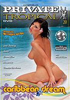 Tropical 20  Caribbean Dream