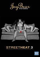 Street Heat 3