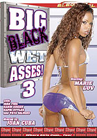 Big Black Wet Asses 3