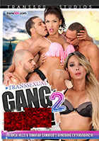Transsexual Gang Bang 2