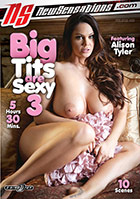 Big Tits Are Sexy 3  2 Disc Set kaufen