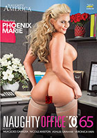 Naughty Office 65 DVD - buy now!