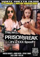 This Isn\'t Prison Break It\'s A XXX Spoof