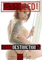Anal Destruction 5