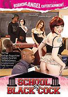 School Of Black Cock