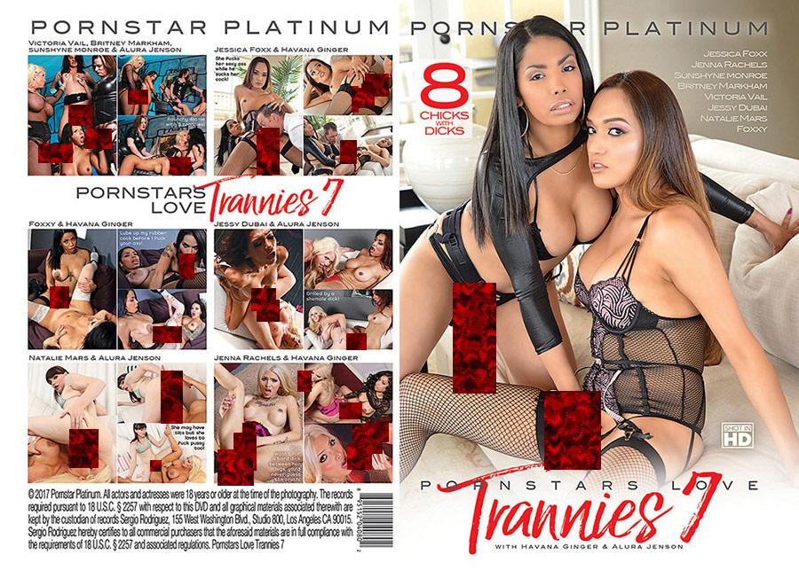 Pornstars Love Trannies 7
