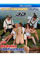 Die Bullen vom Fuschlsee 2 - True Stereoscopic 3D Bluray 1080p