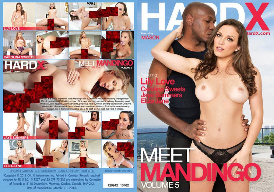 Meet Mandingo 5