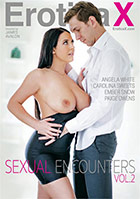 Sexual Encounters 2