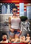 Porn In The U.S.A.