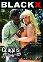 Cougars Blakened