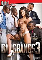 The Gangbangs 3 - 2 Disc Set