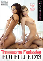 Threesome Fantasies Fulfilled 13