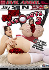Anal Acrobats 3 - Special 2 Disc Set