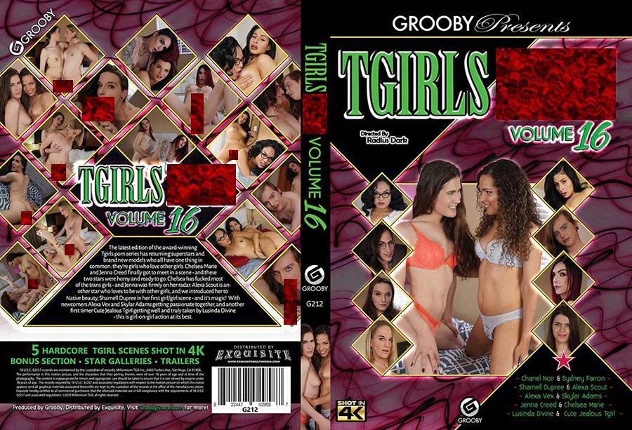 TGirls Porn 16