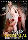 Torrid Transexual Threesomes 2