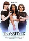 Transfixed 6